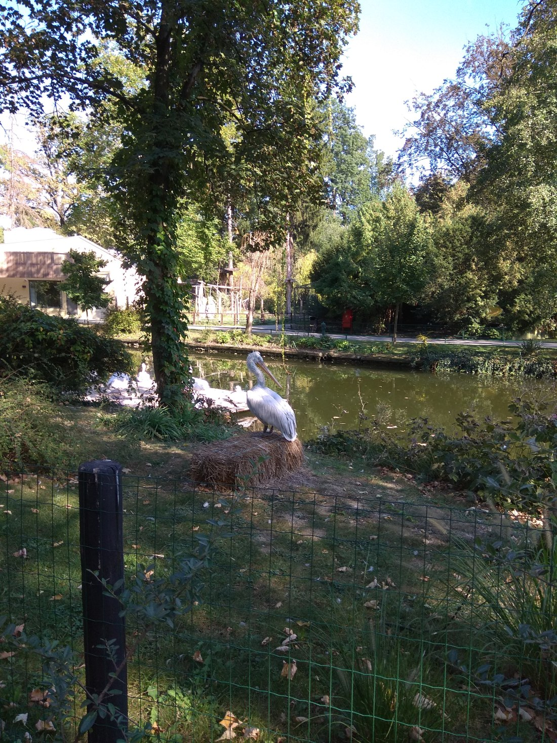 Zagreb Zoo.jpg